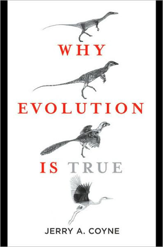 an analysis of the problem with evolutionists problems in the creationist battle Today, methodological naturalism and evolution are  we are plunged into the  first of the big problems,  the third option is simply to refuse to get into the battle  at all  or prove science by doing an analysis of the host  today's miracles  also are really more a matter of.