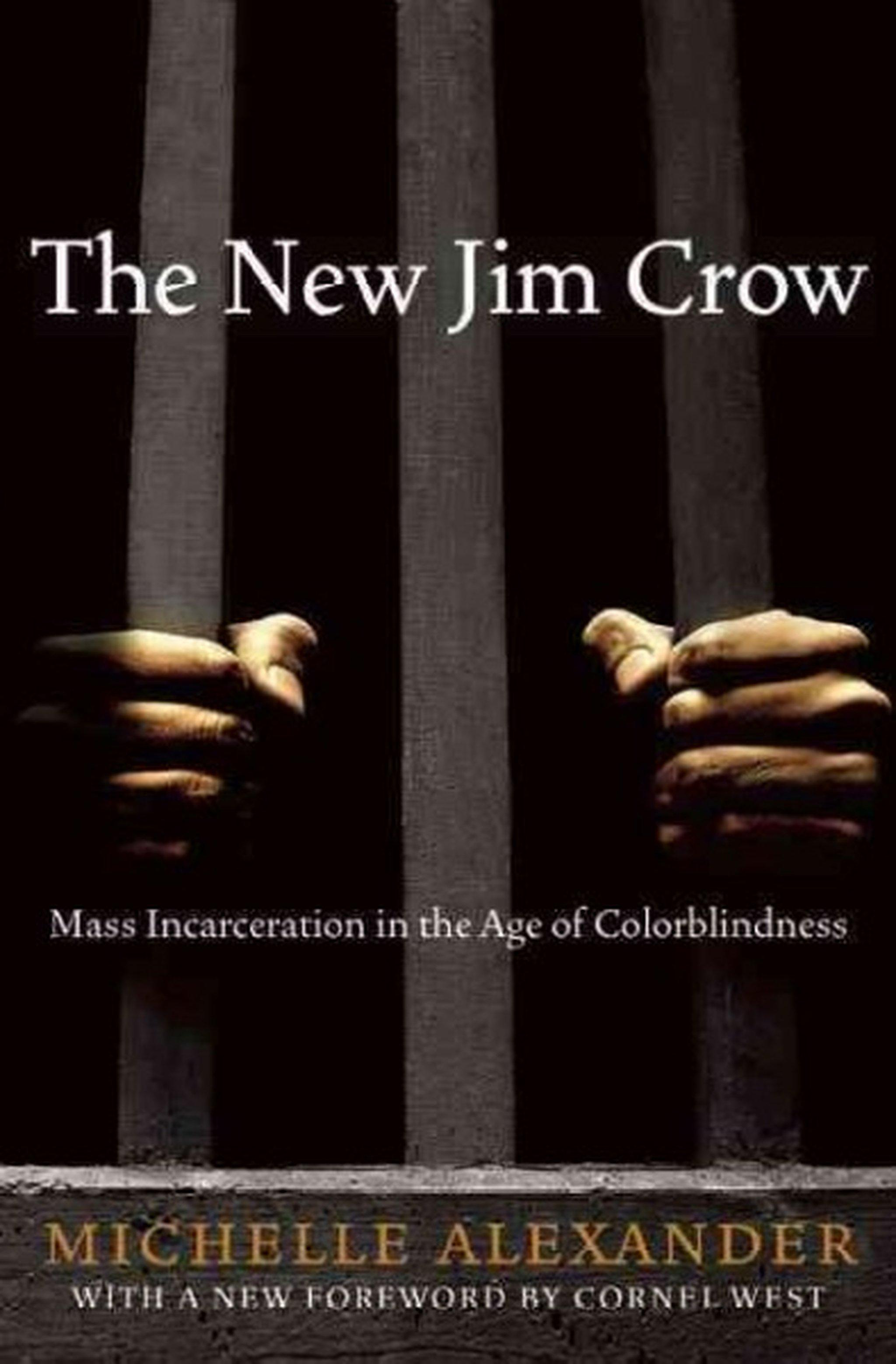 Image result for the new jim crow